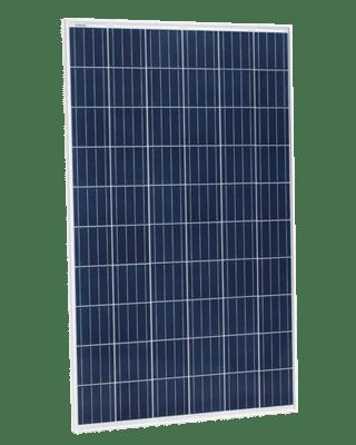 Eagle Solar Panels